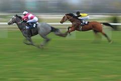 Velka Chuchle prix - paardenrennen Royalty-vrije Stock Foto's