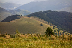 Velka Fatra. Mountains in Slovakia Stock Images