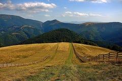 Velka Fatra, Slovakia. Nature , Travel , Mountain , Grass , Relax Royalty Free Stock Photos