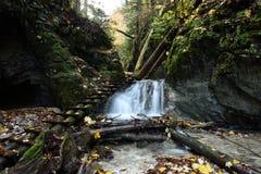 Velky Kysel Gorge, Slovakia Royalty Free Stock Photo