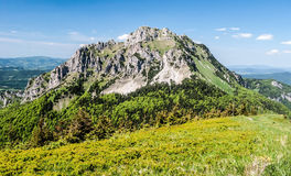 Velky Rozsutec hill in Mala Fatra mountains in Slovakia. Rocky dolomitian Velky Rozsutec hill in Mala Fatra mountains in Slovakia during nice day with blue sky stock image