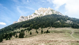Velky Rozsutec hill from Medziholie in Mala Fatra mountains in Slovakia. Rocky dolomitian Velky Rozsutec hill from Medziholie mountain meadow with isolated small stock photography