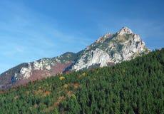 Velky Rozsutec, Nature Reserve, Slovakia Royalty Free Stock Photo