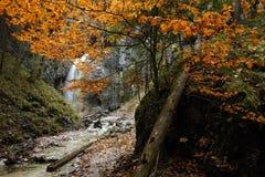 Velky vodopad, Piecky, Slowakije Stock Afbeelding