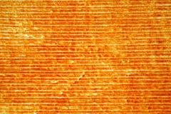 Velluto arancione Fotografie Stock Libere da Diritti