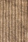 Velluto di cotone di Brown Immagini Stock Libere da Diritti