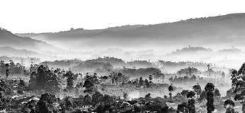 Velo de la nube en el valle Fotos de archivo libres de regalías