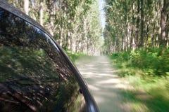 Velocidad que conduce en el camino de tierra a través del bosque Imagen de archivo libre de regalías
