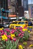 Velocidades amarillas del taxi a través del Times Square en Nueva York. Imagen de archivo