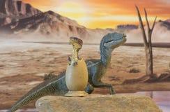Velociraptor μωρών από το αυγό με το αρπακτικό πτηνό μητέρων Στοκ Φωτογραφίες