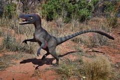 Velociraptor royaltyfri fotografi