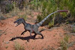Velociraptor photos stock