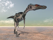 Velociraptor ilustração royalty free