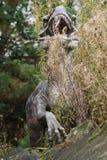 Velociraptor Στοκ Φωτογραφίες