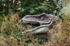 Velociraptor Στοκ εικόνα με δικαίωμα ελεύθερης χρήσης