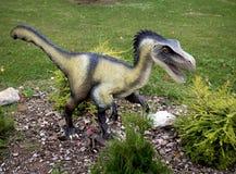 Velociraptor dinosaur Obraz Stock