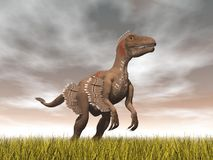 Velociraptor dinosaur - 3D render Stock Photography