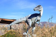 Velociraptor Dinosaur at a park Stock Photo