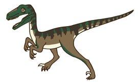 Velociraptor Dinosaur Walking Royalty Free Stock Photos