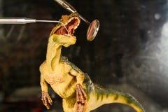 Velociraptor do dinossauro para examinar os dentes com espelho e ponta de prova dentais O conceito dos cuidados dent?rios Dinossa imagem de stock royalty free