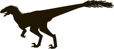 Velociraptor with feathers, silhouette Royalty Free Stock Photos