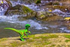 Velociraptor odprowadzenie na starej skale z wodą w tle obraz stock