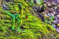 Velociraptor odprowadzenie na starym mech z małym krzakiem fotografia stock