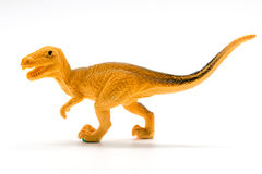Velociraptor toy model on white background. Closeup Stock Images