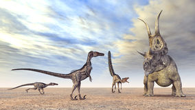 Velociraptors Hunting Stock Photo