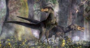 Velociraptors que cazan en el bosque imágenes de archivo libres de regalías