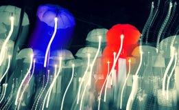Velocità della luce al neon dei umberlls Fotografia Stock Libera da Diritti