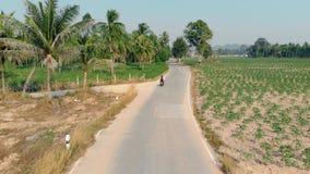 Velomotor azul do passeio do indivíduo e da menina após a floresta verde da palma vídeos de arquivo