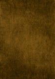Velours copper-colored. Image libre de droits