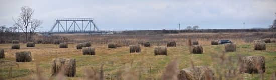 velours grasses Stock Images