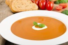 Velouté de tomates Image stock
