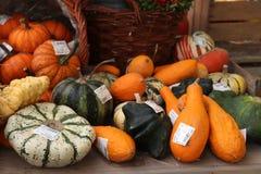 Velserbroek, οι Κάτω Χώρες, στις 17 Οκτωβρίου 2018: διακοσμήσεις φθινοπώρου στοκ εικόνα