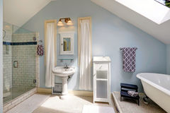 Velux bathroom with antique bath tub Royalty Free Stock Photo