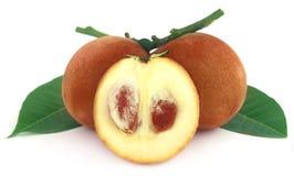 Velvet apples Stock Images