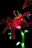 Velvet flowers Royalty Free Stock Image