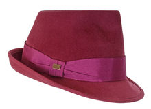 Velvet hat Stock Photography