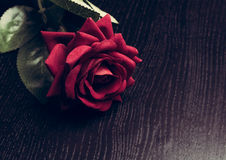 Velvet red rose on wood table, vintage style, valentine day concept Stock Images