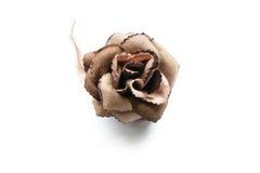 Velvet rose Royalty Free Stock Images