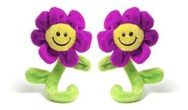 Velvet Sunflowers royalty free stock photos