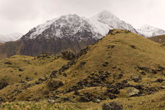 Velvety hills in the tract Dzhily-Su.The Elbrus region Royalty Free Stock Image