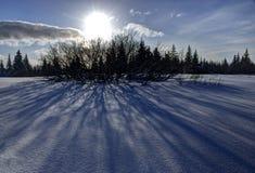 Vem aqui o sol Imagens de Stock