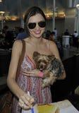 Ven al top model Miranda Kerr con el perro en LAX Fotografía de archivo libre de regalías