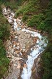 Vena del fiume della montagna fotografie stock libere da diritti