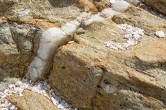 Vena della calcite in roccia Immagine Stock