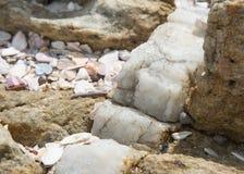 Vena della calcite in roccia Fotografia Stock