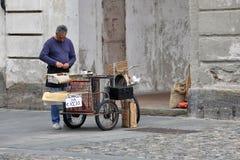 Venaria Reale, Italie - marchand ambulant des châtaignes Photo stock